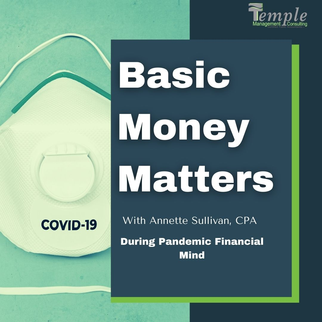 During Pandemic Financial Mind